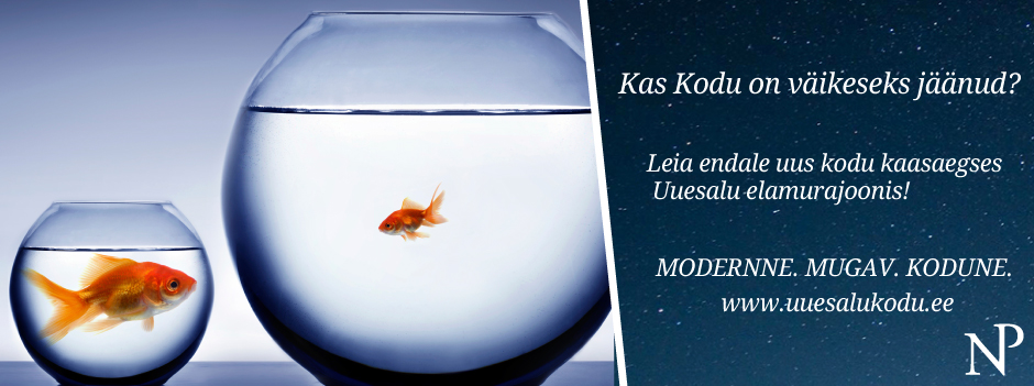 Erkki Laur - uuesalukodu - fish - EST